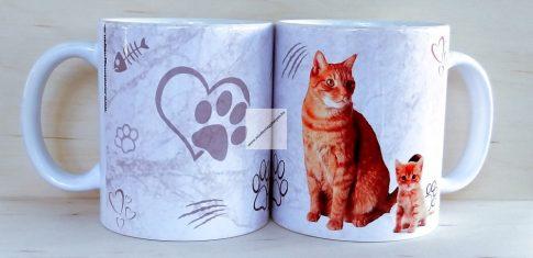 Vörös cica